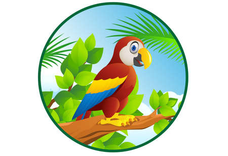 plumed: Macaw Bird Illustration
