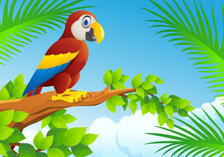 illustration zoo: Macaw Bird Illustration
