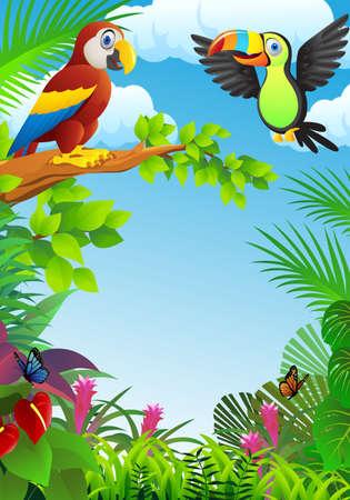 pajaro caricatura: Las aves en el bosque tropical Vectores
