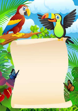 guacamaya caricatura: Las aves con la muestra en blanco