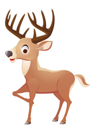 wild venison: Deer cartoon  Illustration
