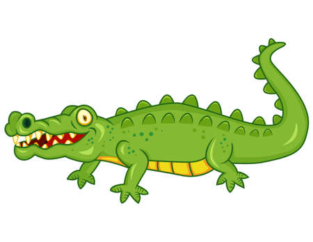 alligator: Crocodile cartoon Illustration