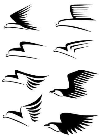 falcons: Eagle symbol