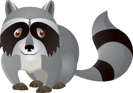 Racoon Cartoon Ilustrace