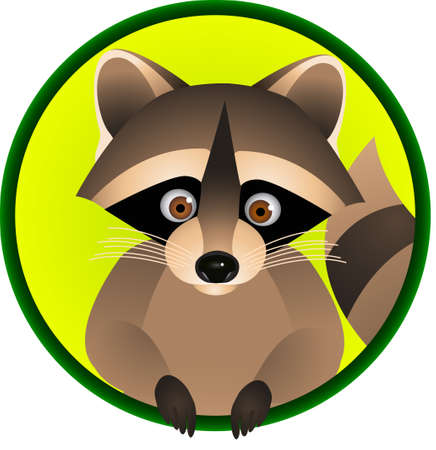 Racoon Cartoon 矢量图像