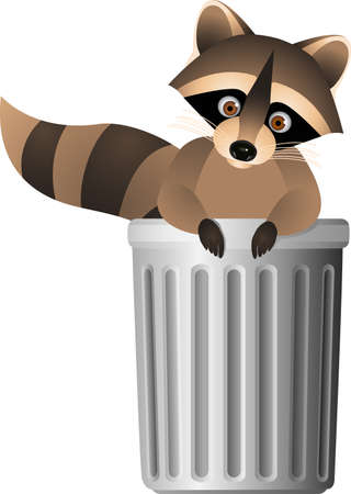 furry tail: Raccoon inside garbage can