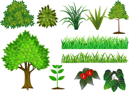 Plant and tree collection Stock Illustratie