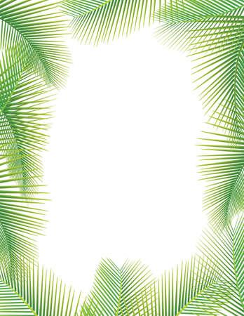 Las hojas de palmera sobre fondo blanco Ilustración de vector