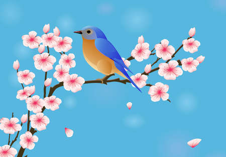 Background with blossom and bird 矢量图像