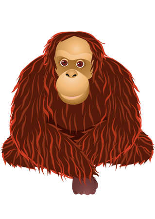 Cartoon orang-outan Banque d'images - 13281606