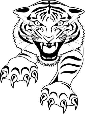 wildcat: Tiger tattoo Illustration