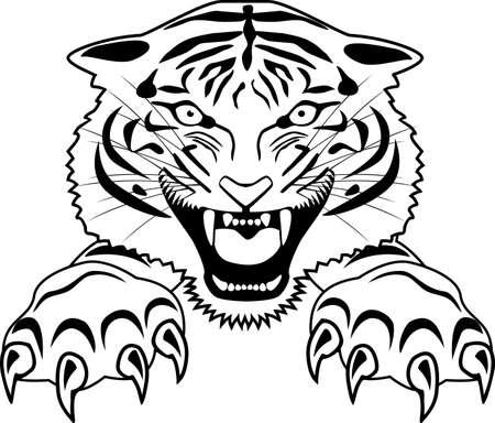 curve claw: Tiger tattoo Illustration