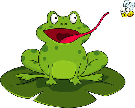 Frog With Fly Ilustrace