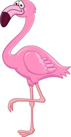 flamenco ave: Flamingo de dibujos animados