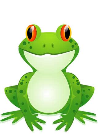 grenouille: Dessin animé drôle crapaud