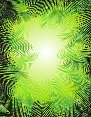 selva: Fondo de la hoja de palma Vectores