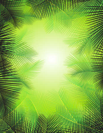 palm fruits: Palm leaf background