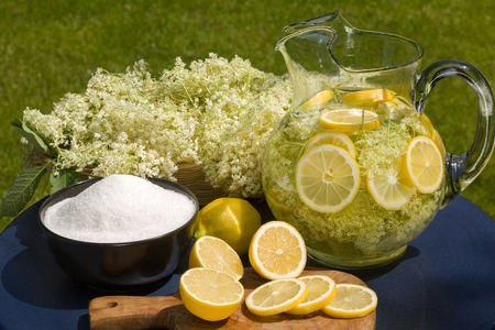 Drink of elder flowers is very refreshing and healthy photo