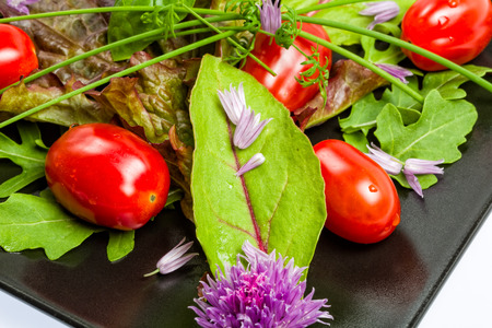 rocket lettuce: Mixed vegetable salad from leaves and tomatoes