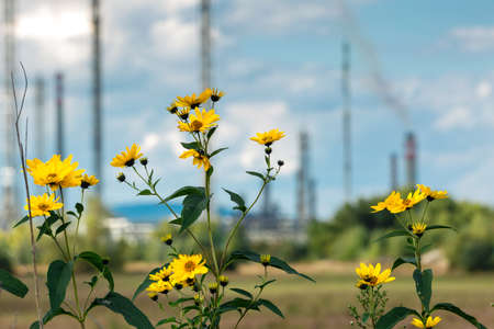 stark: Refinery in stark contrast to nature and agriculture