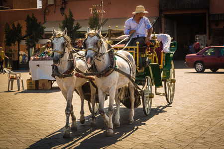 Horse carriage for tourists on Jemaa el Fna square in Marrakech Editorial