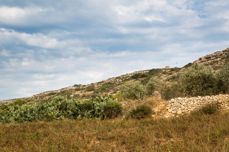 reclamation: Reclamation of stony soil on the island of Malta is hard for small farmers. Stock Photo