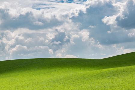 Green fields near Hodonin in Moravia, Czech Republic Stock Photo