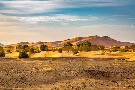 reg: The edge of the Sahara desert in the southwestern part of Morocco