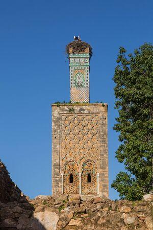 Ruins of Chellah sanctuary with 13th century minaret in Rabat, Morocco