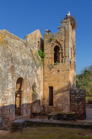 Ruinen von Chellah-Schongebiet mit Minarett aus dem 13. Jahrhundert in Rabat, Marokko Standard-Bild - 76667738