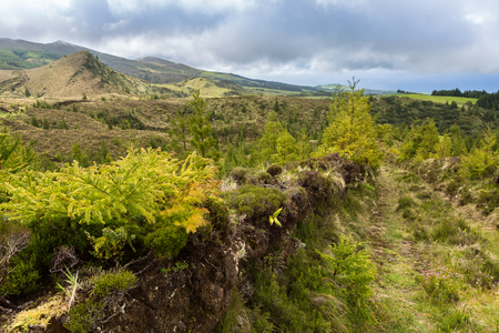 portugal agriculture: Landscape over blue and green lakes. Blue and green lakes are located in the volcano craters of the island of Sao Miguel, part of the Azores.