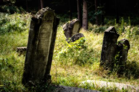 grave stone: Old abandoned Jewish cemetery above the village Dobra voda, Slovakia. (Blurred effect Illustration)