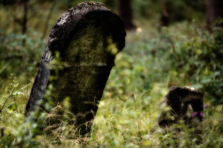 place of worship: Old abandoned Jewish cemetery above the village Dobra voda, Slovakia. (Blurred effect Illustration)
