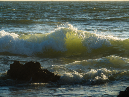 The waves of the Atlantic are lighted by the sunset. Gale on the southern Portuguese coast of the Atlantic.