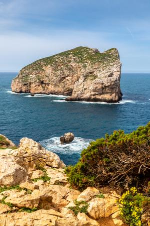 View of the Isola Foradada on the northern coast of Sardinia, Italy
