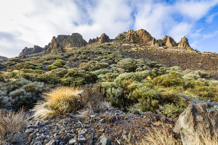 View of the landscape in Teide National Park. Tenerife, Canary Islands, Spain
