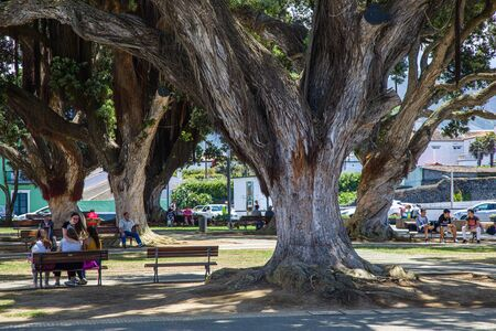 Ribeira Grande, Portugal -  Jun 05, 2019: Park in front of the town hall, Sao Miguel Island, Azores archipelago, Portugal Editorial