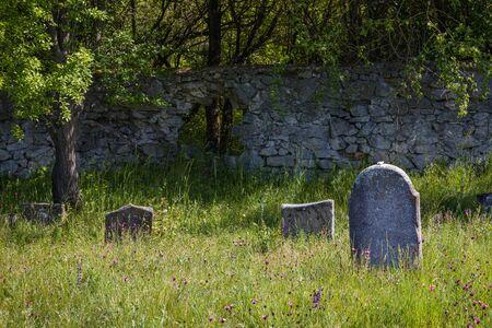 Very old abandoned Jewish cemetery near the village of Trstin, Slovakia Reklamní fotografie