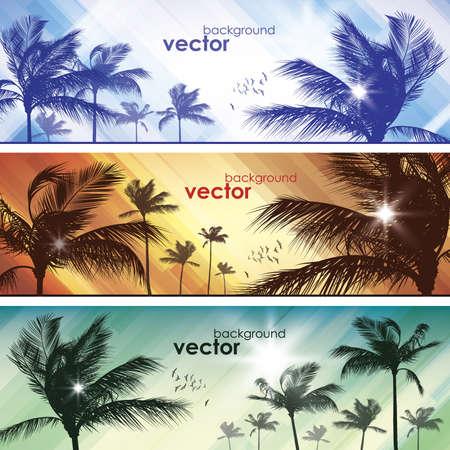 Palm tree  Header set Stock Vector - 15173256