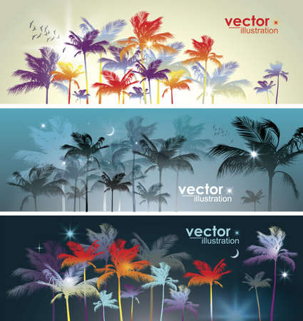 Palm tree  Header set Stock Vector - 15173262