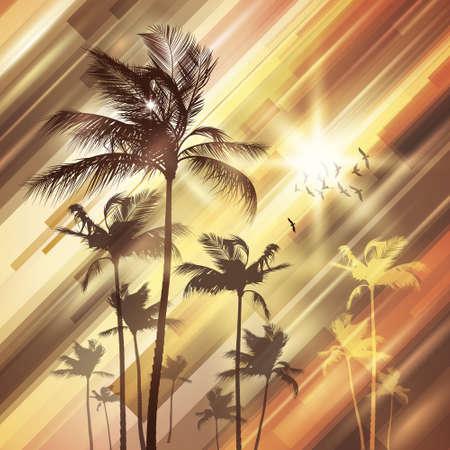 sunup: Palm tree at sunset