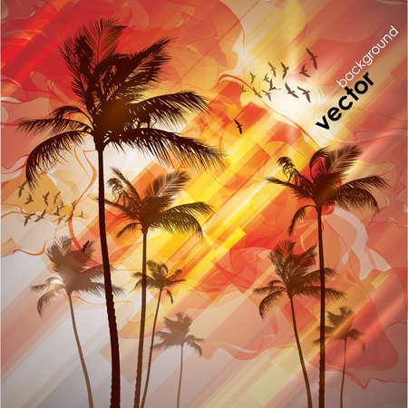 beach scene: Palm tree at sunset