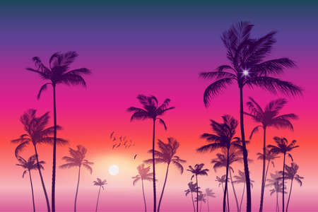 sunup: Panorama of  tropical palm tree landscape  at sunset or moonlight, with cloudy sky. Highly detailed  and editable Illustration