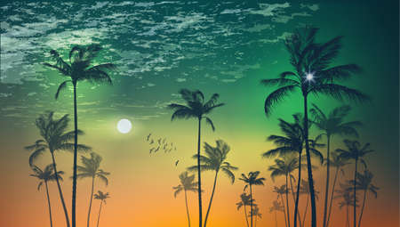 sunup: Scenic  tropical palm trees  at sunset or moonlight, with cloudy sky. Highly detailed  and editable Illustration