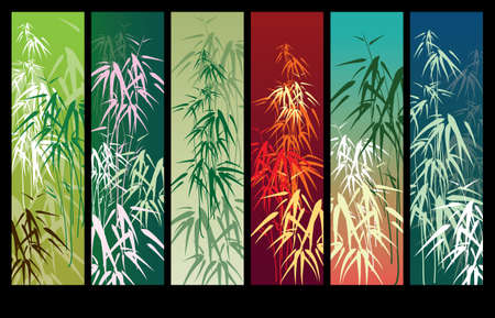 shoot: Bamboo vector background with banner for text or image Illustration