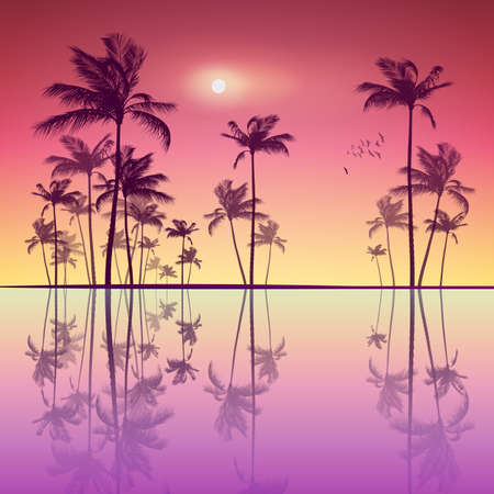 coastlines: Silhouette of tropical palm trees  at sunset or sunrise, with cloudy sky . Highly detailed  and editable