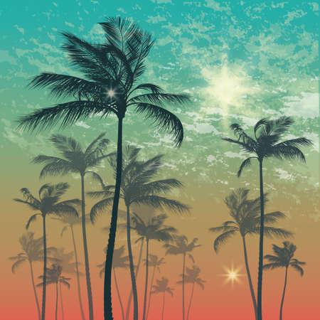 sundown: Silhouette of palm tree and sunset sky Illustration