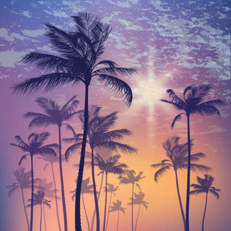 sunup: Silhouette of palm tree and sunset sky Illustration