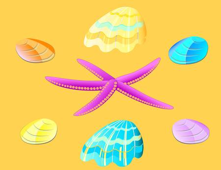 Vector set of sea star and seashells Vector