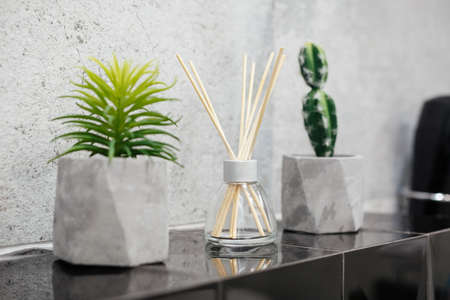 Air fresher and house plants in pots on the stone black tale closeup Imagens